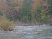Steel creek near Ponca,