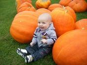 Logan having fun with pumpkins.JPG