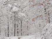 Ozark snow looks like northwest AR