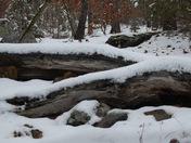 snow on Tennessee Ridge Road