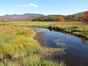 Mackenzie Wilderness