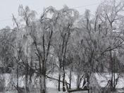 Ice and Wind Damage