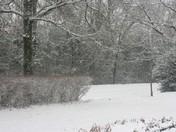Johnson County Snow