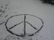 Peaceful snow 2.jpg