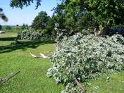 Storm damage branches 7-14-2010