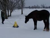 I'll sled, too!