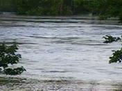 river outside waterloo