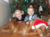 The kids and dog in front of the tree