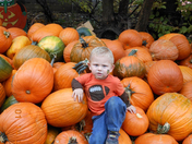 Kaiden at Vala's pumpkin patch