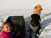 Grandaughter and our dog buddies!!!