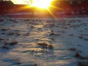 Beautiful Sunset Taken by 12 year old Ciera