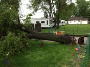 Storm Damage - 6th and Pierce in Fremont, Neb.