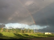 Yesterday's storms/suzanne brittain