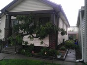 tree branch broke off ....on to my neighbors porch