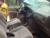 tree falls on woman in car