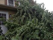 Re: Storm photo