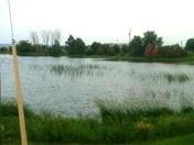 Flooding 2011