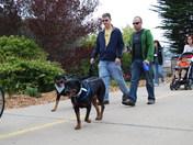 Wag n' Walk May 1st 2009 003.jpg