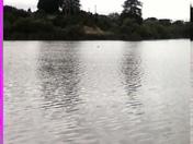 view of pinto lake