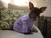 Liza is ready for bed!