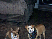 Lucy and Dora