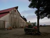 A Barn in Salinas