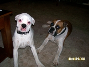 Thelma & Roxie