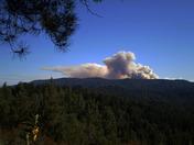 Swanton Fire