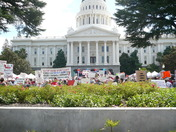 Tea Party at State Capital