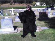 The Bear(on).jpg