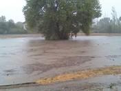 Llagas Creek