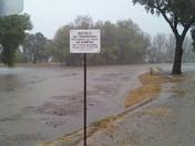 Llagas Creek Morgan Hill