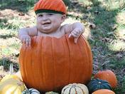 chandler in a pumpkin