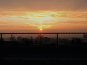 """Sun Rise Over the Fence"""