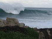Ocean Blvd., P.G., Jan 21