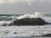 P.G. Coast, Jan. 21
