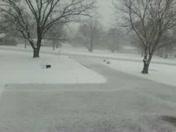 lavaca snow