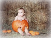 wyatt pumpkin name.jpg