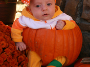 sweet little pumpkin