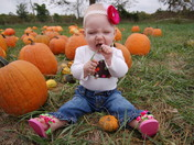Fun in the Pumpkin Patch