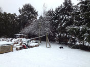 my furry friend and snow