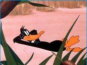 daffy-duck-1.jpg