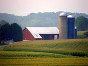 Lebanon Co. Farm