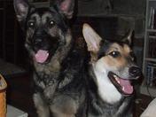 Caesar and Mya
