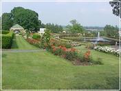 Hershey Rose Gardens