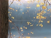 Autumn morning Susquehanna River fog