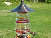 Hummingbird  2009