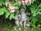 froggy garden