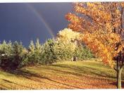 Rainbow over Gate
