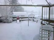 Manheim Snow